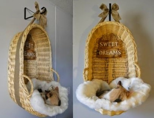 10 ideas de camas recicladas para mascotas5