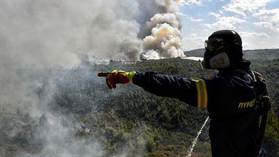 Χαλκιδική: Σε εξέλιξη φωτιά σε δασική περιοχή του Ταξιάρχη