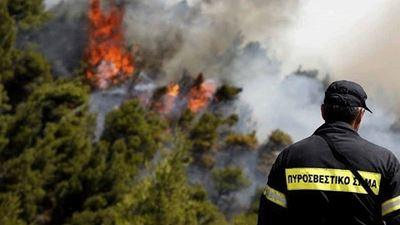 Φωτιά στη Λίμνη Ευβοίας - Μεγάλη κινητοποίηση της Πυροσβεστικής